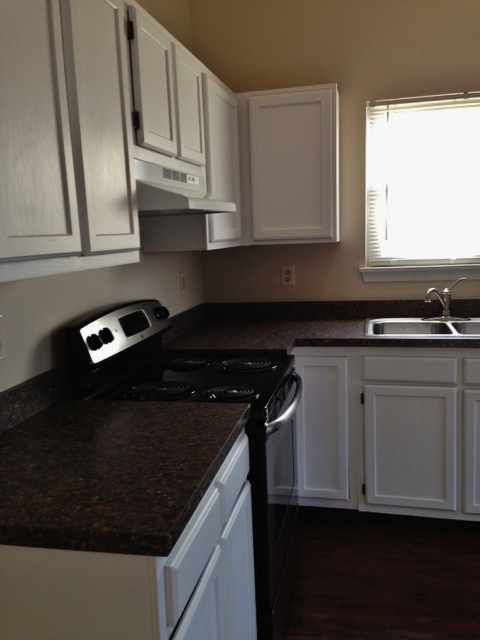 Updating kitchen cabinets the landlord chronicles for Bad smell in kitchen cabinets